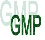 GMP/SOP Audit - Packaging