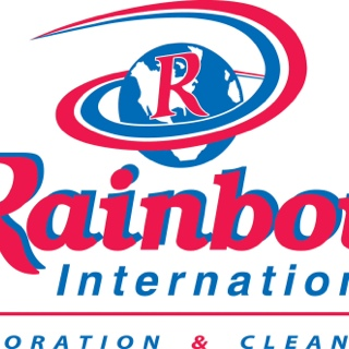 RAINBOW INTERNATIONAL - DIRECTOR VISIT FORM