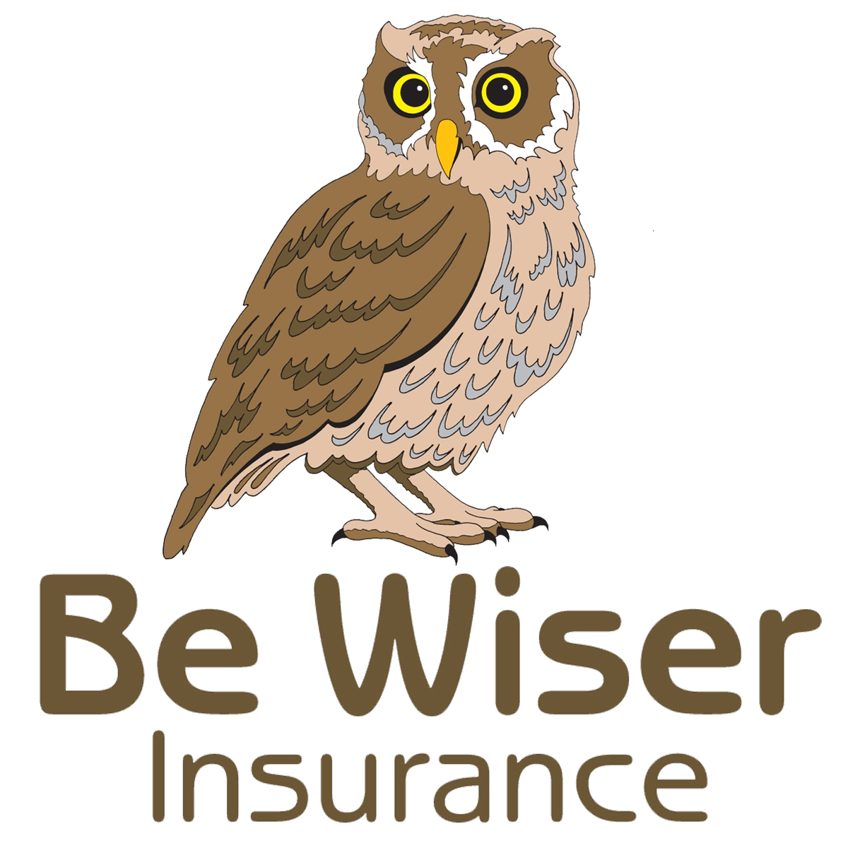 Be Wiser Progress Review V1.0