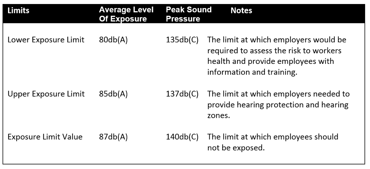GIG Noise Assessment Checklist - SafetyCulture