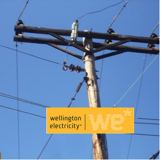 NGA - Wellington Electricity Pole Information Checklist ...